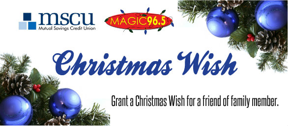 mutual savings credit union mscu is proud to continue to donate clothing toys groceries and financial assistance to community members in need through - Christmas Assistance 2014